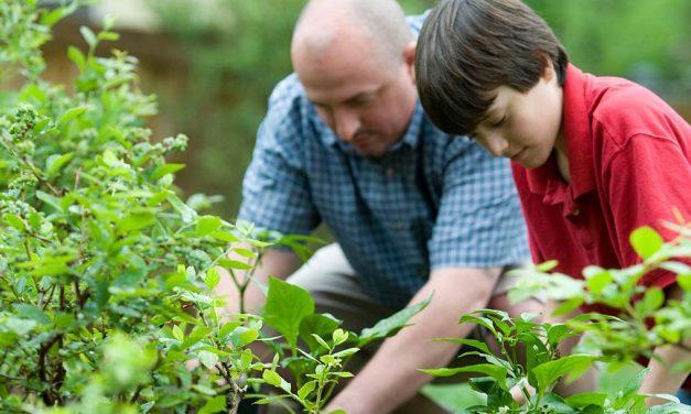 What helps people grow in generosity?